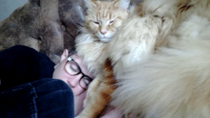 Roommate, Cat, and Picture: Fell asleep snuggling the cat. Here's the picture my roommate took and sent me