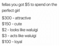 perfect girl: fellas you got $5 to spend on the  perfect girl  $300 attractive  $150 cute  $2 looks like waluigi  $3 - acts like waluigi  $100 loyal