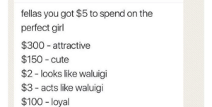 Meirl by cthula-hoop MORE MEMES: fellas you got $5 to spend on the  perfect girl  $300 attractive  $150 cute  $2 - looks like waluigi  $3- acts like waluigi  $100 - loyal Meirl by cthula-hoop MORE MEMES