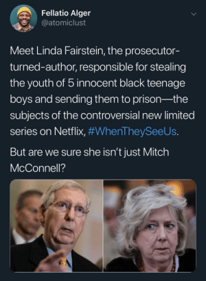 ‪Got the bitch! The nose is a dead giveaway.‬: Fellatio Alger  @atomiclust  Meet Linda Fairstein, the prosecutor-  turned-author, responsible for stealing  the youth of 5 innocent black teenage  boys and sending them to prison-the  subjects of the controversial new limited  series on Netflix, #WhenTheySeeUs.  But are we sure she isn't just Mitch  McConnell? ‪Got the bitch! The nose is a dead giveaway.‬