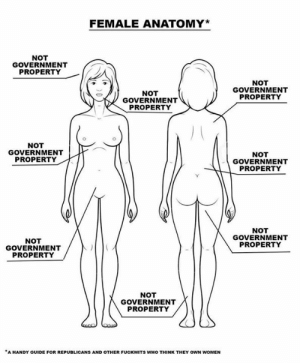 Handy: FEMALE ANATOMY*  NOT  GOVERNMENT  PROPERTY  NOT  GOVERNMENT  NOT  GOVERNMENT  PROPERTY  PROPERTY  NOT  GOVERNMENT  PROPERTY  NOT  GOVERNMENT  PROPERTY  NOT  GOVERNMENT  PROPERTY  NOT  GOVERNMENT  PROPERTY  NOT  GOVERNMENT  PROPERTY  A HANDY GUIDE FOR REPUBLICANS AND OTHER FUCKWITS WHO THINK THEY OWN WOMEN