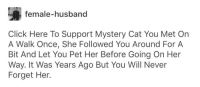 Click, Tumblr, and Lightning: female-husband  Click Here To Support Mystery Cat You Met On  A Walk Once, She Followed You Around For A  Bit And Let You Pet Her Before Going On Her  Way. It Was Years Ago But You Will Never  Forget Her.