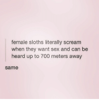 Scream, Sex, and Girl Memes: female sloths literally scream  when they want sex and can be  heard up to 700 meters away  same This is basically @kateqfunny and you should follow her @kateqfunny 👈🏼👈🏼👈🏼