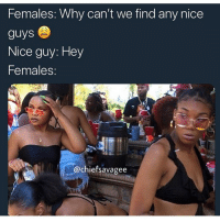On god can't even look at you girls cause y'all already saying men ain't shit: Females: Why can't we find any nice  guys  Nice guy: Hey  Females:  @chiefsavagee On god can't even look at you girls cause y'all already saying men ain't shit