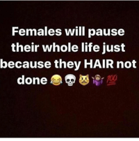 Life, Memes, and True: Females will pause  their whole life just  because they HAIR not  done Ladies, is this True? 🤔Follow @HAIRSOFAB for Top quality Hair Extensions & Wigs. 🙌🏽