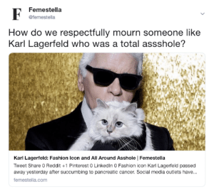 Karl Lagerfeld: Fashion Icon and All Around Asshole: Femestella  @femestella  How do we respectfully mourn someone like  Karl Lagerfeld who was a total assshole?  Karl Lagerfeld: Fashion Icon and All Around Asshole Femestella  Tweet Share 0 Reddit +1 Pinterest 0 Linkedln 0 Fashion icon Karl Lagerfeld passed  away yesterday after succumbing to pancreatic cancer. Social media outlets have...  femestella.com Karl Lagerfeld: Fashion Icon and All Around Asshole