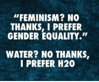 "Feminism, Water, and Gender: ""FEMINISM? NO  THANKS, I PREFER  GENDER EQUALITY.  WATER? NO THANKS  I PREFER H20"