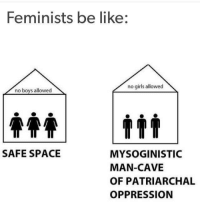 Girls, Memes, and Space: Feminists be like:  no girls allowed  no boys allowed  SAFE SPACE  MYSOGINISTIC  MAN-CAVE  OF PATRIARCHAL  OPPRESSION