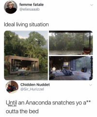 Anaconda, Memes, and Yo: femme fatale  @eliesaaab  ldeal living situation  Chidden Nuddet  @Sir_Hurizzel  Until an Anaconda snatches yo a**  outta the bed  @will ent 😂Lmao