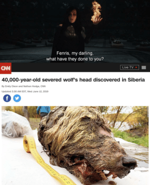 cnn.com, Head, and Live: Fenris, my darling,  what have they done to you?  Live TV  CN  40,000-year-old severed wolf's head discovered in Siberia  By Emily Dixon and Nathan Hodge, CNN  Updated 3:38 AM EDT, Wed June 12, 2019  f Something other than Keanu