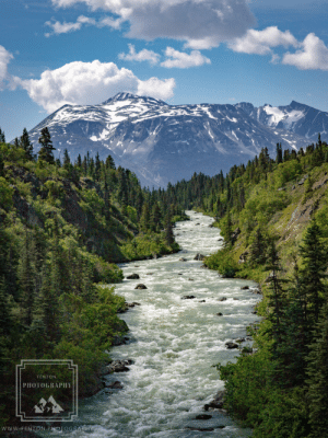 fentonphoto:The magnificent view from the middle of the Yukon suspension bridge in northern British Columbia.: fentonphoto:The magnificent view from the middle of the Yukon suspension bridge in northern British Columbia.