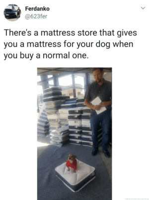 awesomacious:  Very cool mattress store: Ferdanko  @623fer  LL  There's a mattress store that gives  you a mattress for your dog when  you buy a normal one.  made by someone who cares for you  > awesomacious:  Very cool mattress store