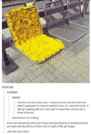 Killer of flowersomg-humor.tumblr.com: fernacular.  lucybelen:  plantial:  I did this at a bus stop once. I missed my bus and the next one  wasn't supposed to come for another hour, so I had time to kill. A  little girl walking with her mom said it looked like a throne for a  flower princess.  killed flowers for nothing  those are dandelions they don't have feelings physical or emotional there  are quite literally billions of them and it made a little girl happy  calm the heck down Killer of flowersomg-humor.tumblr.com