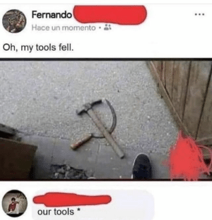Funny, Meme, and Communist: Fernando  Hace un momento  Oh, my tools fell.  our tools* funny meme about hammer and sickle falling in the shape of the communist symbol