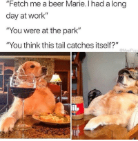 """<p>Hard working doggo via /r/memes <a href=""""http://ift.tt/2F8fWtx"""">http://ift.tt/2F8fWtx</a></p>: """"Fetch me a beer Marie. I had a long  day at work""""  """"You were at the park""""  """"You think this tail catches itself?""""  @MasiPo <p>Hard working doggo via /r/memes <a href=""""http://ift.tt/2F8fWtx"""">http://ift.tt/2F8fWtx</a></p>"""