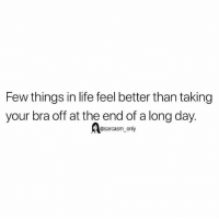 Funny, Life, and Memes: Few things in life feel better than taking  your bra off at the end of a long day.  @sarcasm only SarcasmOnly