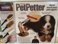 Pets, Water, and Never: fficial Pet Petter  sumper Sticker  Todd Lawsons  Never  touch your  pets again!  llove my pet  Versatile attachments  sold separately  Up to 85ppm  (pets per minute  Optional restraining leash  attaches pet to base  Hard, shiny water  resistont housing  Double  Bruch  weighted base