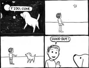 Good, Boy, and Fido: FIDO, COME.  GOOD BoY! He is a very good boy