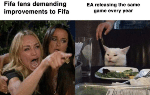 And they still keep buying it..: Fifa fans demanding  EA releasing the same  improvements to Fifa  game every year And they still keep buying it..
