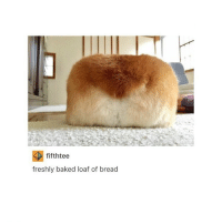 fifthtee  freshly baked loaf of bread i've been tired for 3 days straight