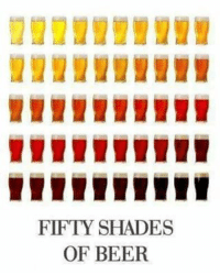 Beer, Memes, and Shade: FIFTY SHADES  OF BEER Da @alpha_woman_official