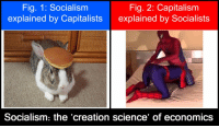 https://t.co/ZB8JZ7nm8c: Fig. 1: Socialism  explained by Capitalists  Fig. 2: Capitalism  explained by Socialists  Socialism: the creation science of economics https://t.co/ZB8JZ7nm8c