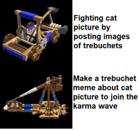 trebuchet: Fighting cat  picture by  posting images  of trebuchets  Make a trebuchet  meme about cat  picture to join the  karma wave