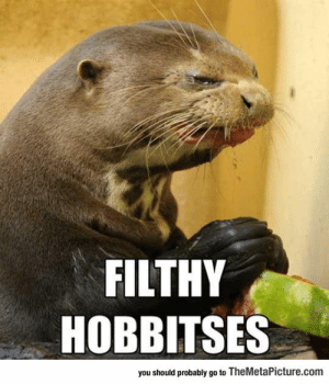 Tumblr, Blog, and Http: FILTHY  HOBBITSES  you should probably go to TheMetaPicture.com srsfunny:  Gollum Otter Is Not Amused