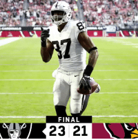 Memes, Cardinals, and Raiders: FINAL  23 21 FINAL: The @Raiders defeat the Cardinals! #OAKvsAZ  #RaiderNation https://t.co/cjIyPtnzuB