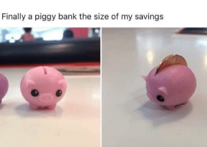 Memes, Bank, and 🤖: Finally a piggy bank the size of my savings