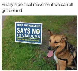 Animals, Funny, and Memes: Finally a political movement we can all  get behind  THOR MICHAELSON  SAYS NO  TO VACUUMS  They're loud and they freak him out.  Pad  Chea 42 Funny Dog Memes That'll Make Your Day! - Lovely Animals World