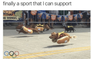 Tumblr, Blog, and Http: finally a sport that I can support  HE WIENERS omgsamchap: whats-guud:  leemah31:   thefingerfuckingfemalefury:  We are all winners here 3  I like the flying one   I like the one in the back  @nicgq