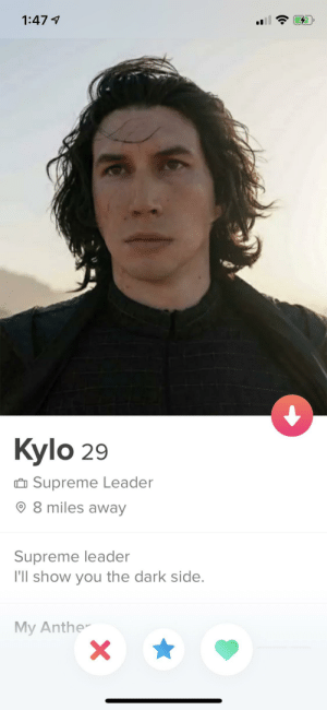 Finally a tinder profile I can swipe right on, no questions asked: Finally a tinder profile I can swipe right on, no questions asked