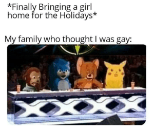 meirl by TheHalfBloodPrince25 MORE MEMES: *Finally Bringing a girl  home for the Holidays*  My family who thought I was gay: meirl by TheHalfBloodPrince25 MORE MEMES