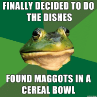 Imgur, Been, and Bowl: FINALLY DECIDED TO DO  THE DISHES  FOUND MAGGOTS IN A  CEREAL BOWL  made on imgur It had been a while