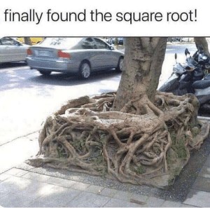 Math, Square, and Thought: finally found the square root! And I thought it was math!!