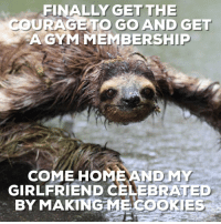 "Advice, Tumblr, and Animal: FINALLY GETTHE  COURAGETO GO AND GET  AGYM MEMBERSHIP  COME HOMEANDMY  GIRLFRIEND CELEBRATED  BY MAKINGMECOOKİES <p><a href=""http://advice-animal.tumblr.com/post/175338592778/workout-complete"" class=""tumblr_blog"">advice-animal</a>:</p>  <blockquote><p>Workout Complete</p></blockquote>"