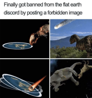Memes, Earth, and Image: Finally got banned from the flat earth  discord by posting a forbidden image eXPOSED!! via /r/memes https://ift.tt/2n5t3El