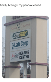 Panda, Corp, and Can: finally, I can get my panda cleaned  Cleaners  andal  Lab Corp  aS HEARING  CENTER  EARING COTE
