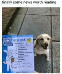 positive-memes:  Such a good boyy: finally some news worth reading  DAYCARE REPORT CARD  CitSDessl  Today I observed  lovelaffection  shy/timid  aggression  playful/loutgoing  follow/listen to commands  -excessive barking  dog fight  bite/scratch  Comments  Chor lie was very positive-memes:  Such a good boyy