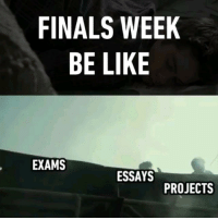 It's that time of the year again. 🏃 Follow @9gag - - - 9gag traintobusan finalsweek: FINALS WEEK  BE LIKE  EXAMS  ESSAYS  PROJECTS It's that time of the year again. 🏃 Follow @9gag - - - 9gag traintobusan finalsweek