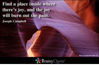 Memes, Image, and Pain: Find a place inside where  there's joy, and the joy  will burn out the pain  Joseph Campbell  Brainy  Quote  Image copyright 2012 Nplore, Inc.