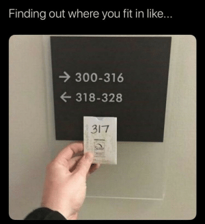 Meirl: Finding out where you fit in like...  300-316  318-328  3I7  Sa  TeremithOude Meirl