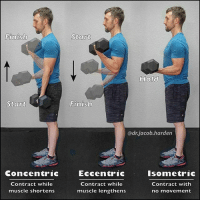 """Gas Pedal, Memes, and True: Finish  Start  Concentric  Contract while  muscle shortens  Start  Hold  Finish  adrjacob harden  Eccentric  Isometric  Contract while  Contract with  muscle lengthens  no movement DIFFERENT TYPES OF MUSCLE CONTRACTION In fitness and rehab, the only way to progress is by incrementally adding more and more stress to the system over time. This is called progressive overload.📈💪 . You've heard me talk about different types of loading like eccentric and isometric, and 😕 I get asked all the time what I mean. So here we go. . There are 3 types of muscle contraction. . Concentric: 🔹This is """"lifting a weight"""". The muscle being contracted (bicep here) actively shortens as it contracts. This is what is most often though of when we think about training and lifting. Eccentric: 🔹This is """"lowering the weight"""". The muscle lengthens while it contracts. If concentric is the gas pedal of your car, eccentric is the brakes. It controls the movement of a joint. It is also where the most muscle damage occurs so slowing down the negative portion of a lift will often leave you sore. The flip side is also true though as something like a kettlebell swing can be great conditioning as there is minimal eccentric and little muscle damage from which you have to recover. Isometric: 🔹This is """"holding the weight"""". The muscle does not change length and the joint does not move during the contraction. Isometrics are great for early rehab phases and is the first loading we introduce after injury. Strength gained from isometrics is fairly position specific so they are useful for strengthening end ranges and weak points in a lift. So now you know what I mean when I talk about these different loading schemes. (Plus you'll be ready for the next trivia night 🤓) Hope you learned a little something! Tag your favorite Myonerd friend and share the wealth! MyodetoxOrlando Myodetox"""