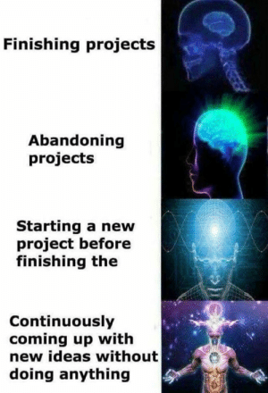 Thats how I roll: Finishing projects  Abandoning  projects  Starting a new  project before  finishing the  Continuously  coming up with  new ideas without  doing anything  P Thats how I roll