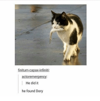 Memes, Infiniti, and 🤖: finitum-capax-infiniti:  actoremergency:  He did it  he found Dory
