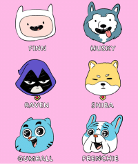 If our characters were doggos 🐶💖🎉 Which one is the goodest boy-girl? Swipe 📲 . NationalDogDay doggos puppers: FINN  HUSKY  RAVEN  SHIBA  GUMBALL  FRENCHIE If our characters were doggos 🐶💖🎉 Which one is the goodest boy-girl? Swipe 📲 . NationalDogDay doggos puppers
