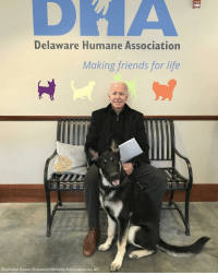 Over the weekend, former Vice President Joe Biden welcomed a furry new addition to his family, an adopted German shepherd pup named Major from a Delaware animal shelter.: FIRE  Delaware Humane Association  Making friends for life  Stephanie Gomez/Delaware Humane Association via AP Over the weekend, former Vice President Joe Biden welcomed a furry new addition to his family, an adopted German shepherd pup named Major from a Delaware animal shelter.
