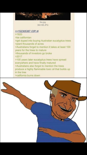 YEET THEM MERICANS: fire.jpg  364 KB JPG  152305387 (OP)  >1920  be californian  get duped into buying Australian eucalyptus trees  plant thousands of acres  >Australians forget to mention it takes at least 100  years for the trees to mature  thousands of investors go broke  2017  >100 years later eucalyptus trees have spread  everywhere and have finally matured  Australians also forgot to mention the trees  produce a highly flammable toxic oil that builds up  in the tree  >california burns down YEET THEM MERICANS