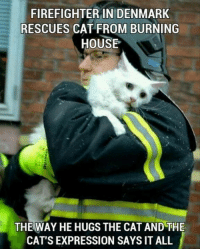 Animals, Cats, and Jackson Galaxy: FIREFIGHTER IN DENMARK  RESCUES CAT FROM BURNING  HOUSE  THE WAY HE HUGS THE CAT AND THE  CAT'S EXPRESSION SAYS IT ALL Find out how you can join Jackson Galaxy Foundation and Red Paw Emergency Relief Team help animals displaced by fires! >>>po.st/VXonsA
